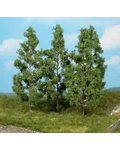 Løvtrær, , HEK1737
