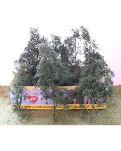 Løvtrær, , HEK1672