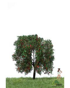 Løvtrær, , MBR51-2404