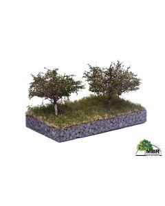 Løvtrær, , MBR53-2304