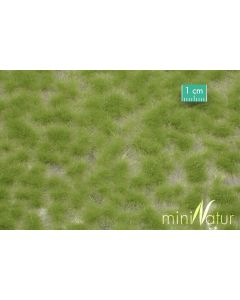 Statisk Gress, mininatur-727-21s, MIN727-21S