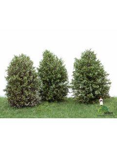 Busker, MBR-Model-50-4008-high-bushes-blooming-white-3-pcs, MBR50-4008