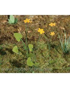 Blomster og planter, Marskoldyr, 1:32 - 35, MDSVG3-003
