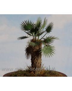 Blomster og planter, Palmeblader, 1:32 - 35, MDSVG3-012