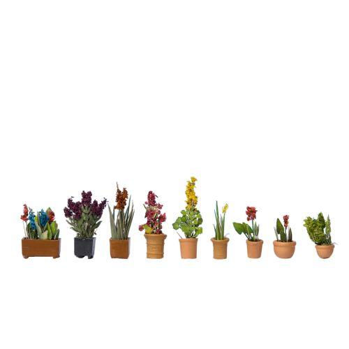 Blomster og planter, , NOC14012
